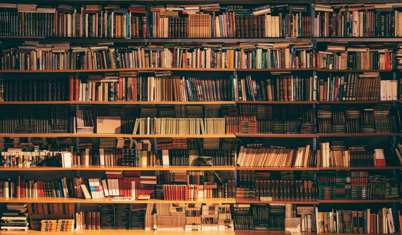 Shelves filled with books.